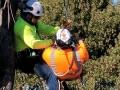clearway-industries-aerial-tree-safety-training-9